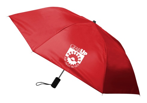 F737 Economy Auto Open Folding Umbrella